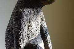 Corinne RIOTTE - Darwin – 34 x 24 x 20 cm bronze